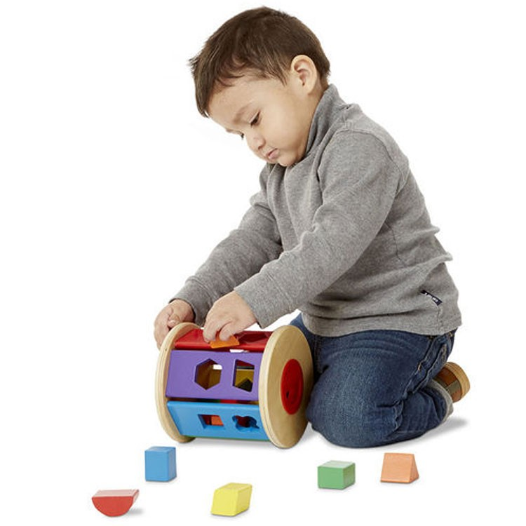 Cognitive Toys Developmental Kit for Toddlers 12-24 Months ...