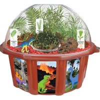 Dinosaur Dome Plant Growing Kit