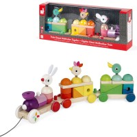Zigolos Giant Multicolor Train Stacking Pull Toy