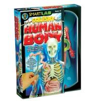 Squishy Human Body Science Kit