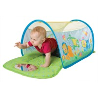 Learn to Crawl Tunnel Baby Activity Set