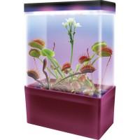 Carnivorous Creations LED Light Cube Plant Kit