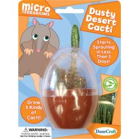 Dusty Desert Cacti Micro Terrarium Mini Plant Kit