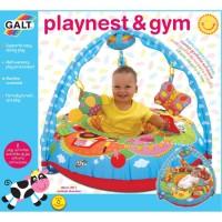 Baby Playnest Inflatable Activity Gym Farm
