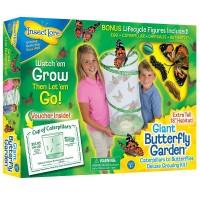 Giant Butterfly Garden Live Butterfly Habitat