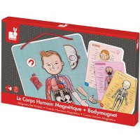 Body Magnet Human Body Multilingual Learning Set