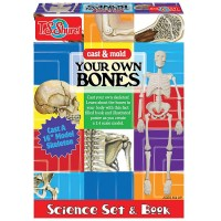 Cast & Mold Your Own Bones Skeleton Science Set & Book